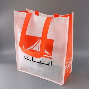 Reasonable price Laminated Recyclable Non Woven Bag - Non-Woven NB19-01 – Ewin
