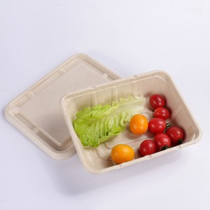 factory Outlets for Compostable Sugarcane Bagasse - ZZ Eco Products 1200ml Rectangle Biodegradable Bagasse Food Container Lid – ZHONGSHENG