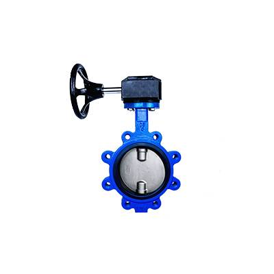 OEM/ODM Supplier Grooved Butterfly Valve - FO1-BV1LT-1G(Lugged type Butterfly Valve–Gear box Operation)  – Fortis