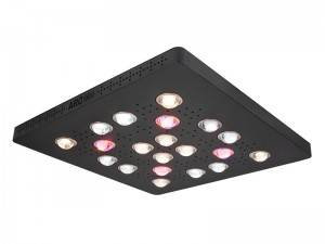 China Wholesale Quantum Led Grow Lighting Factory –  ARC600 / ARC900 Waterproof COB LED GROW LIGHT –  Fullux