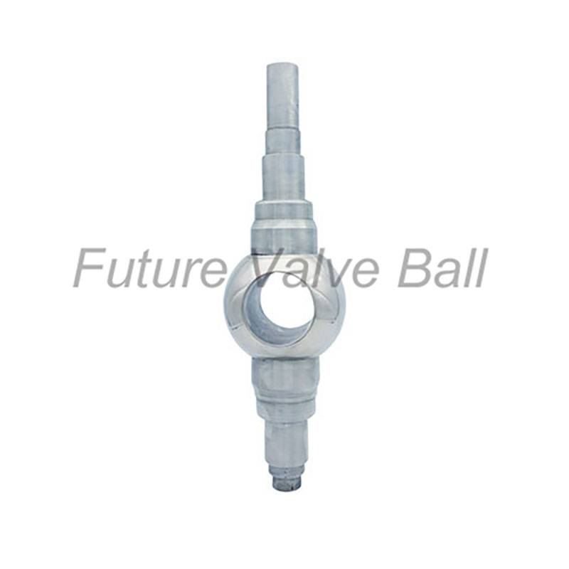 Factory best selling Carbon Steel Ball - Stem ball QC-S03 – Future Valve
