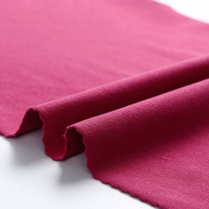 OEM Manufacturer Stretch Jersey Knit Fabric - Cotton-like hand-feel nylon spandex stretch jersey fabric – Huasheng
