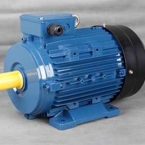 High Quality Induction Motor - IE1 three phase high efficiency motors – Technic