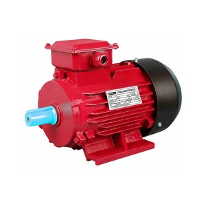 Low price for Ac Motors - Y2 Series Three Phase Cast Iron Housing IE1 Induction Motor – Technic