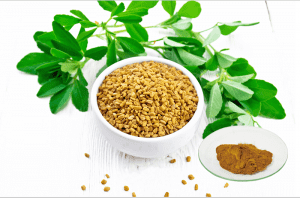 2021 High quality Fenugreek Extract Muscle Enhancing - Furostanol Saponins – Geneham