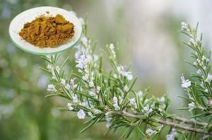 High Performance Rosemary Extract Skin Benefits - Rosmarinic Aic – Geneham