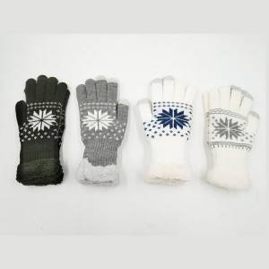 Women Soft Cozy Gloves with Touch Screen