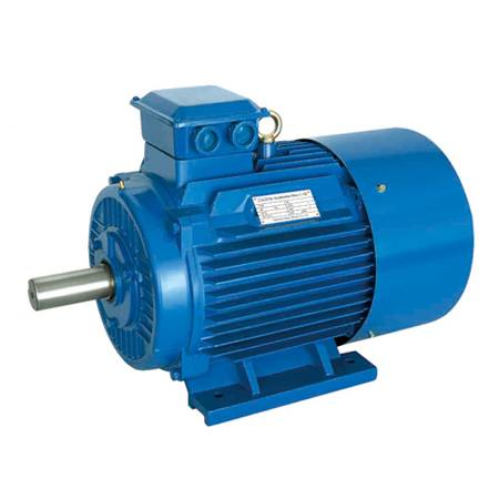 ANP Gost Standard ANP Electric Three Phase Motor engine special for Russia Ukraine Market