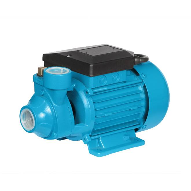 PM45 QB Portable Water Pump