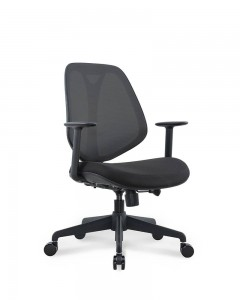 PriceList for Ergonomic Chair For Back Pain - MOIRA – GOODTONE
