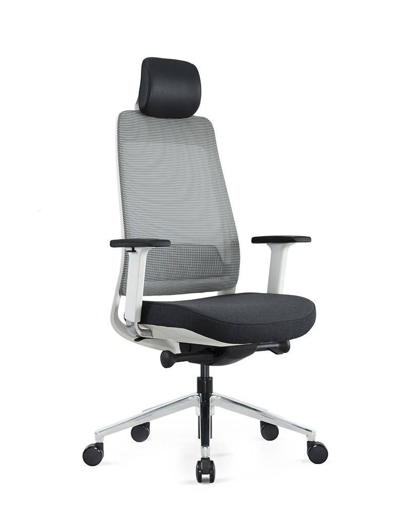 Special Price for Chrome Mesh Fabric Low-Back Task Chair - FILO – GOODTONE