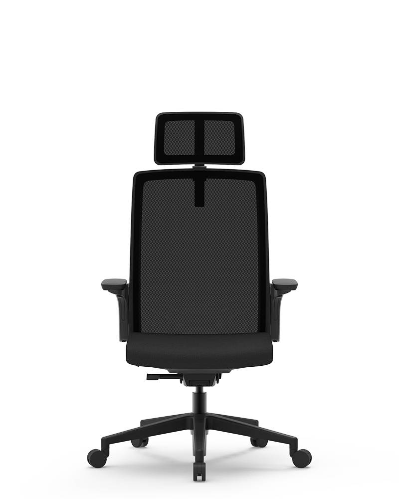 Super Lowest Price Ergonomic Ball Chair - BUTTERFLY-B – GOODTONE