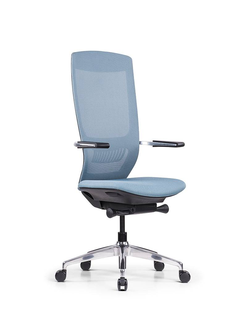 Factory Cheap Hot Ergonomic Executive Chair with Armrests - MAX – GOODTONE