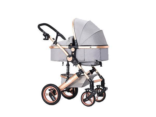 2020 Global Baby Stroller and Stroller Market Analysis, Type, Application, Forecast and COVID-19 Impact Analysis 2025