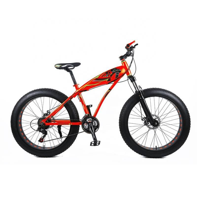 Big tyre bike 20 inch / thick wheels fat tire bike 20 carbon complet / big bike mountain bicycle for adult