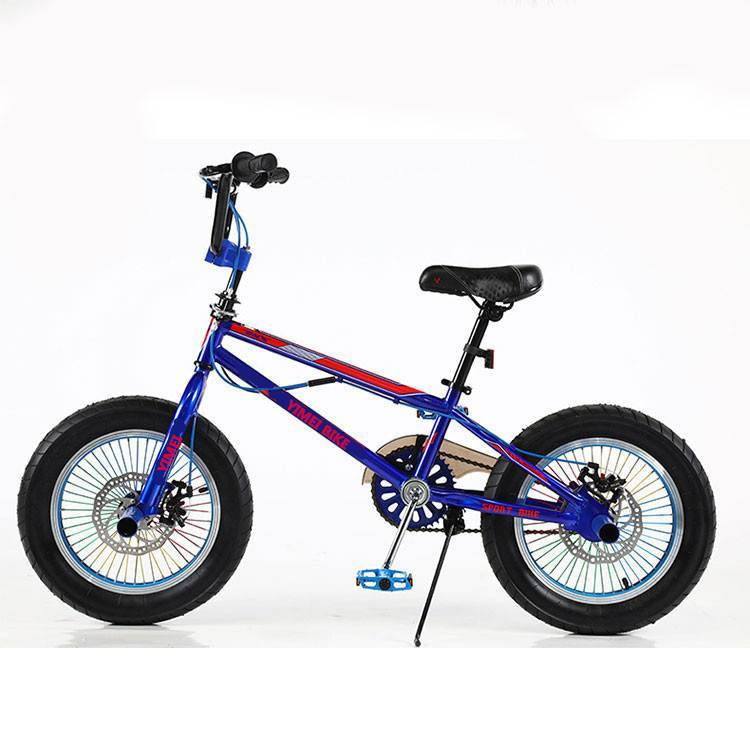 Good quality Girls Bike 24 Inch Bicycle - 2020 new style BMX bicycle /factory price 20 bmx bike/cheap cycle BMX –  Gorgeous Bike