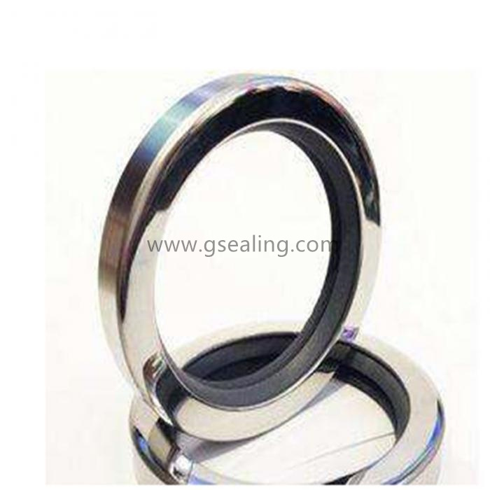 Factory Cheap Hot Ffkm Seal - Ptfe Radial Shaft Seals China Manufacturer – GS Seal