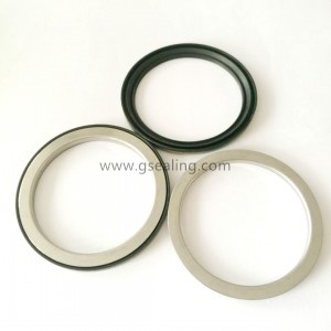 Bearing seal gasket China Factory