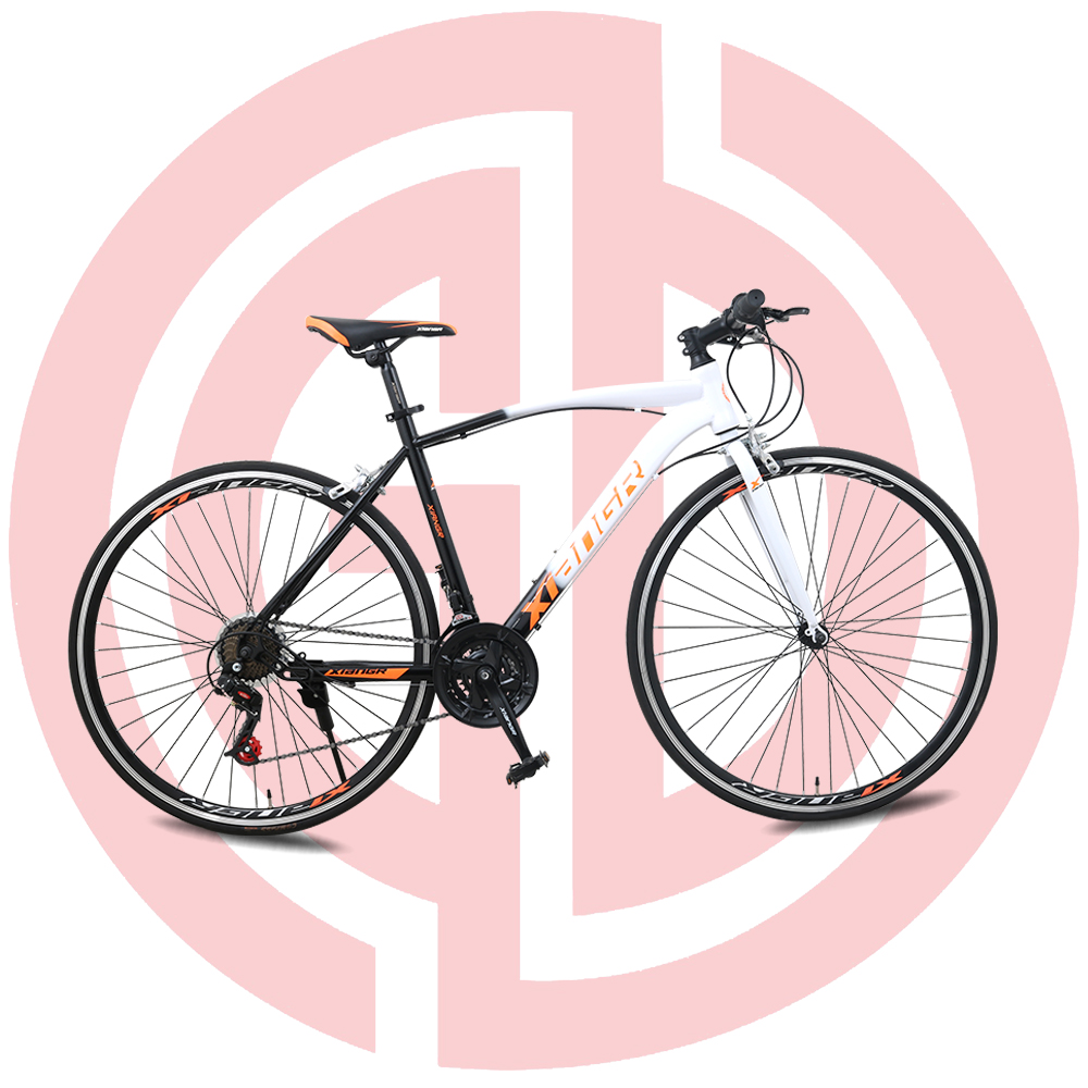 "GD-RDB-002: Road bicycle, 21 speed, steel frame 700"", wheeled ,double disc brake"