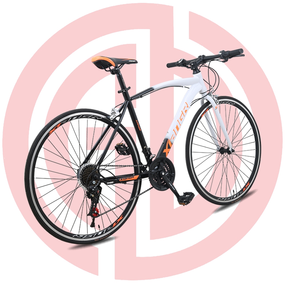 "Special Design for Motorized Bicycles - GD-RDB-002: Road bicycle, 21 speed, steel frame 700"", wheeled ,double disc brake – GUODA"