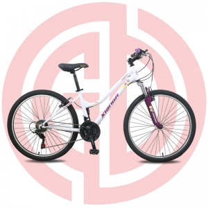 Super Lowest Price Best Bicycle - GD-MTB-002 – GUODA