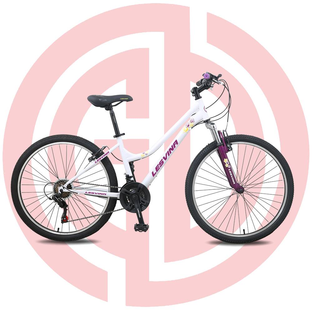 Bottom price China Integral Wheel Road Bike Mountain Bike 21 Speed Variable Speed Mountain Blcycle