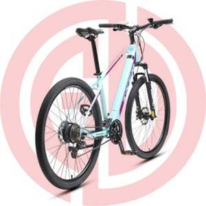 Big Discount Bicycle Spares - GD-EMB-009: Electric Mountain Bicycle, 36v, 29 Inch, mechine disc brakes, wattage: 200 – 250w – GUODA