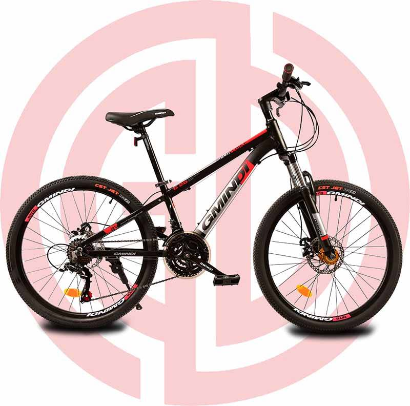 Excellent quality Traditional Bike - GD-MTB-006: 21 speed 24 inches, mountain bike, outdoor cycling – GUODA Featured Image