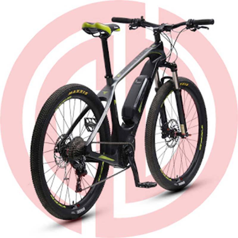 GD-EMB-002: Electric mountain bicycles, 36v, 28 inch,  LCD meter, carbon fibre