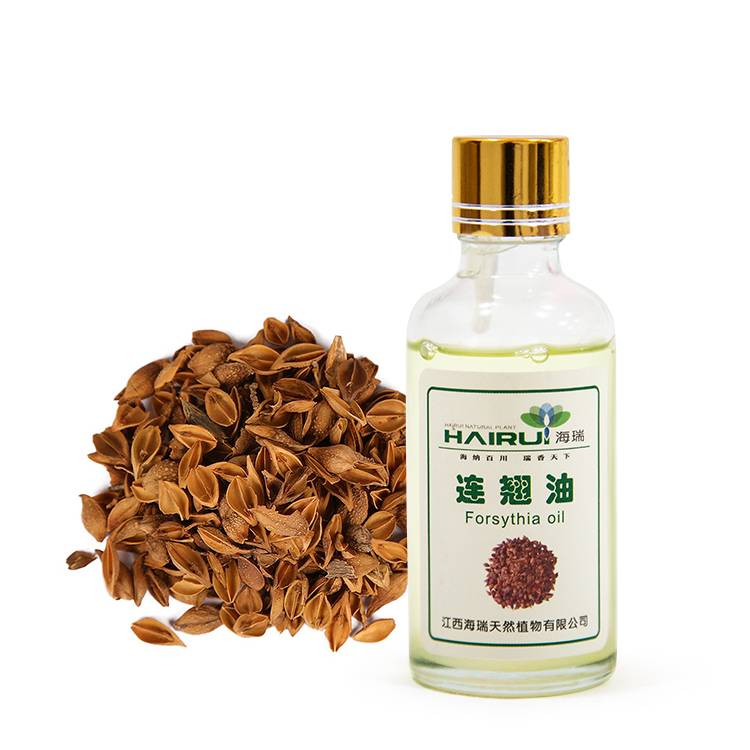 Reasonable price Grapefruit Oil - Chinese herb  forsythia Oil essential oil for skin body care – HaiRui