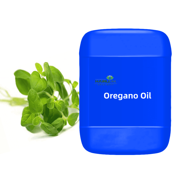 directly factory supplier pure extract Oregano Oil