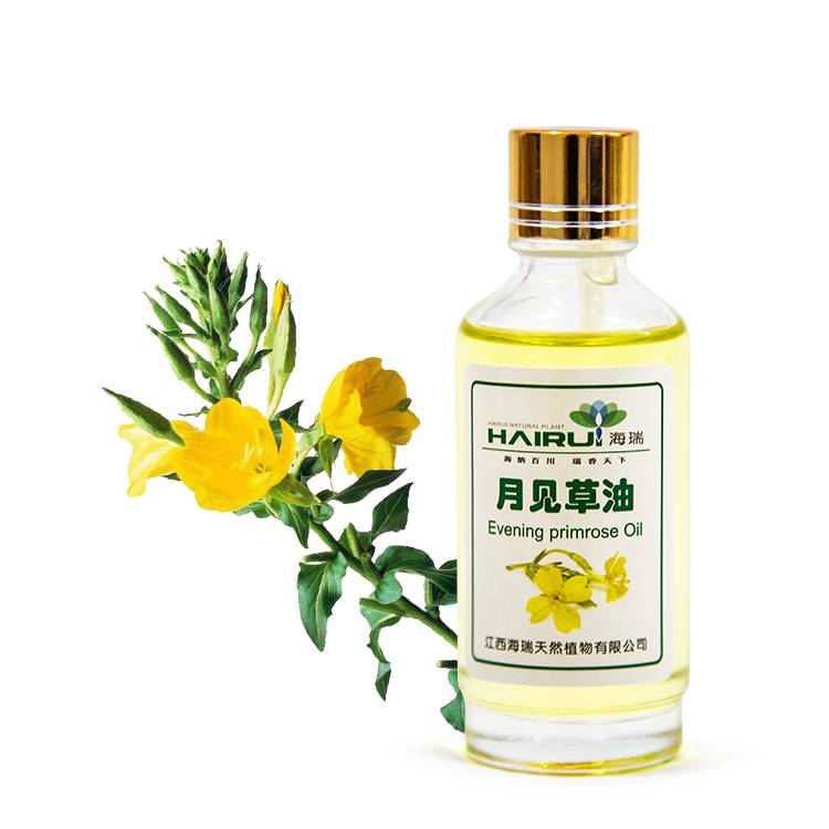 Hot New Products Safflower Carrier Oil - P.E. Evening Primrose oil Natural plant with certificate – HaiRui
