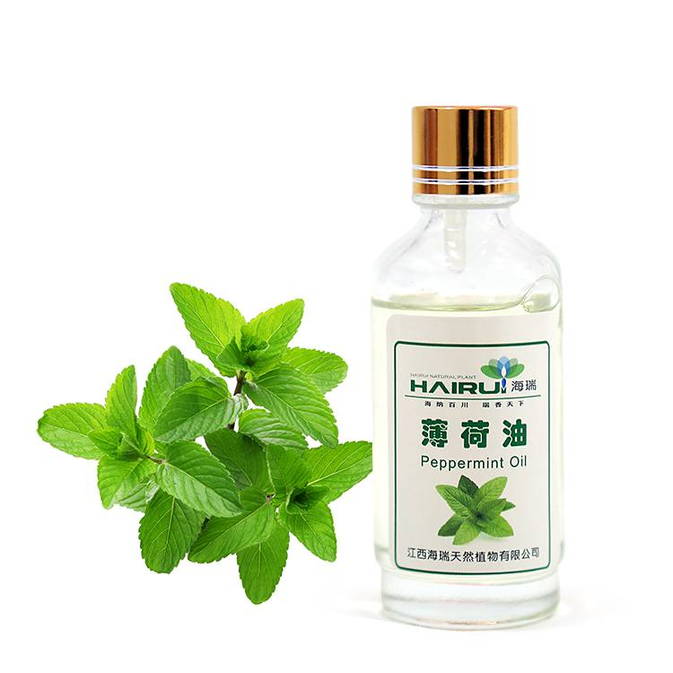 Best Price for Litsea Cubeba Oil - Pure natural food garde peppermint oil bulk price – HaiRui