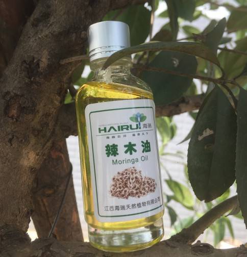 Hot Selling for Virgin Moringa Oil – 100% Natural Organic Cold Pressed Virgin Moringa seed oil Lowest Price – HaiRui
