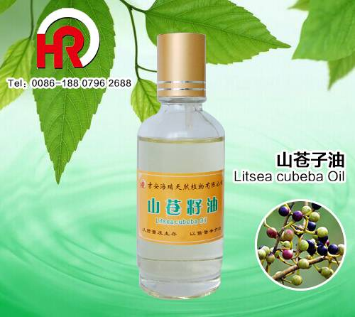 Popular Design for Jasmine Perfume Oil - China manufacturer litsea cubeba essential oil with competitive price – HaiRui Featured Image