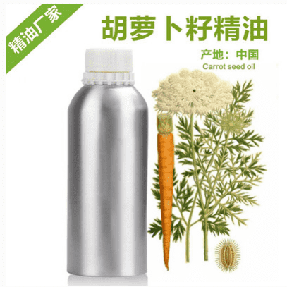 OEM/ODM Supplier Pine Needle Oil - wholesale anti-wrinkle pure carrot seed oil Therapeutic Grade Essential Oil OEM/ODM – HaiRui