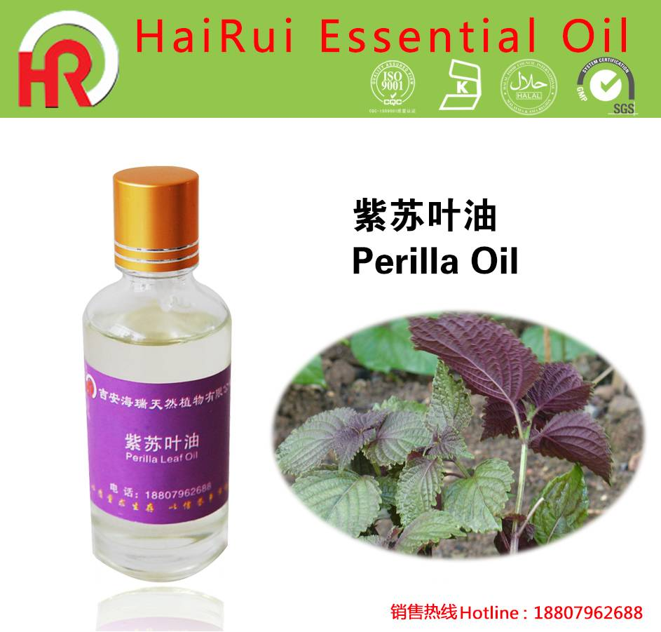 Hot Selling for Mustard Oil - Perilla leaf Essential Oil Packed In Amber Glass Bottle – HaiRui detail pictures