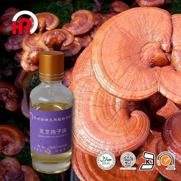 Best Price for Litsea Cubeba Oil - 100% Pure Natural Reishi spore Oil, Ganoderma Lucidum Spores Oil – HaiRui