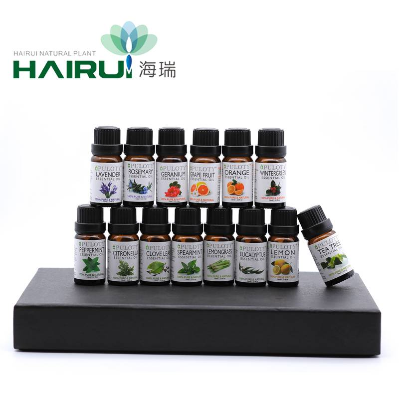 100% Original Edible Spearmint Oil - Aromatherapy diffuser essential oil 10ml 14-gife set – HaiRui