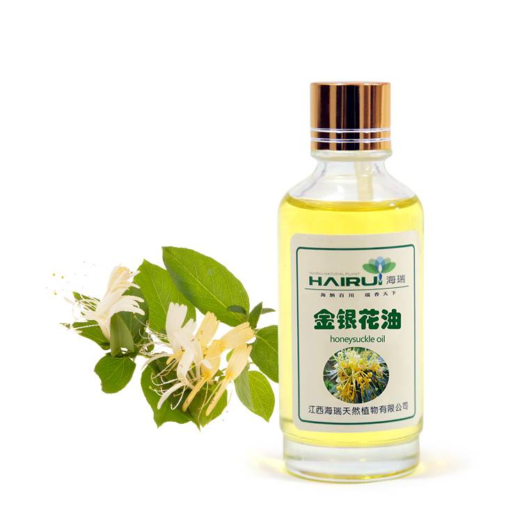 Factory Cheap Citrus Oil For Skin - supplier herb honeysuckle oil extract essential oil for body care – HaiRui