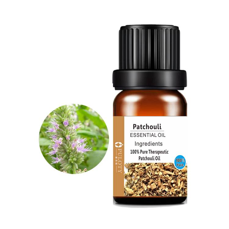 Good Quality Patchouli Oil For Skin - Plant Extract Natural Variety 100 % pure natural Patchouli Essential Oil – HaiRui