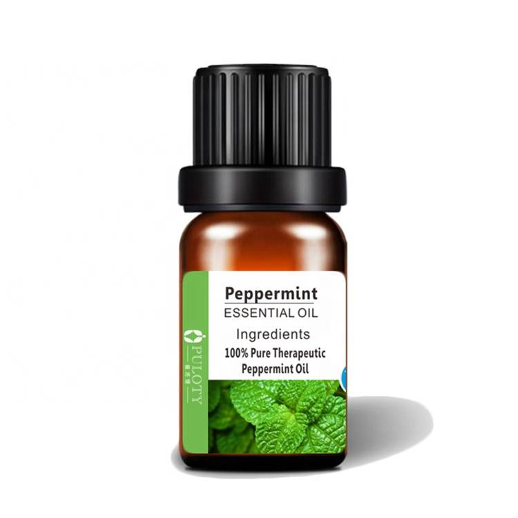 Newly Arrival Natural Citronella Oil - peppermint mint oil cosmetic massage oil – HaiRui