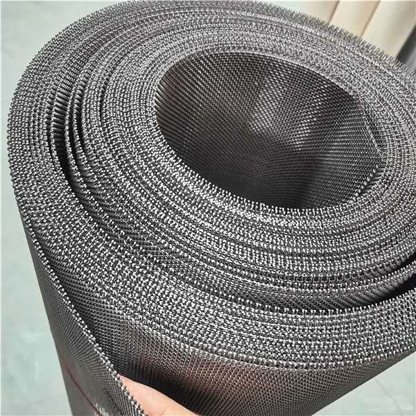 Big Discount Ss Frame Screen - Stainless steel wire mesh woven micro wire mesh for filtering – Hanke detail pictures