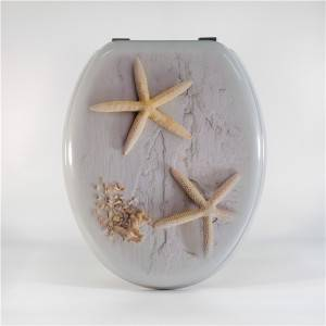 Well-designed Private Custom Toilet Seat - Molded Wood Toilet Seat – Grey Starfish – Haorui