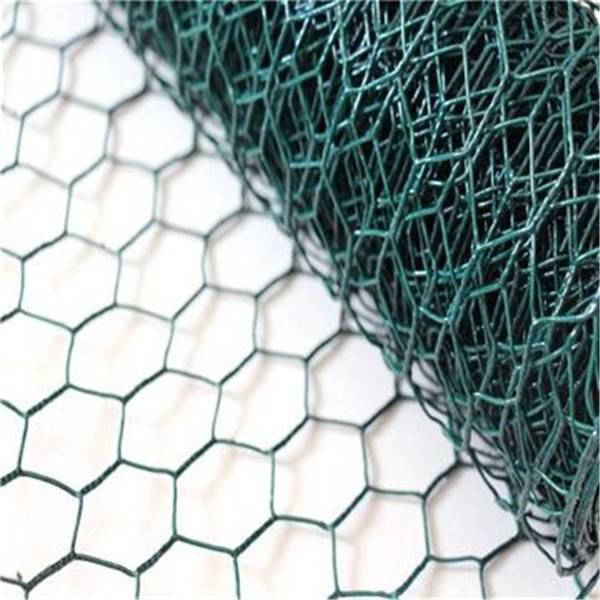 PVC Coated Galvanized Hexagonal Wire Netting Chicken&Poultry  Mesh
