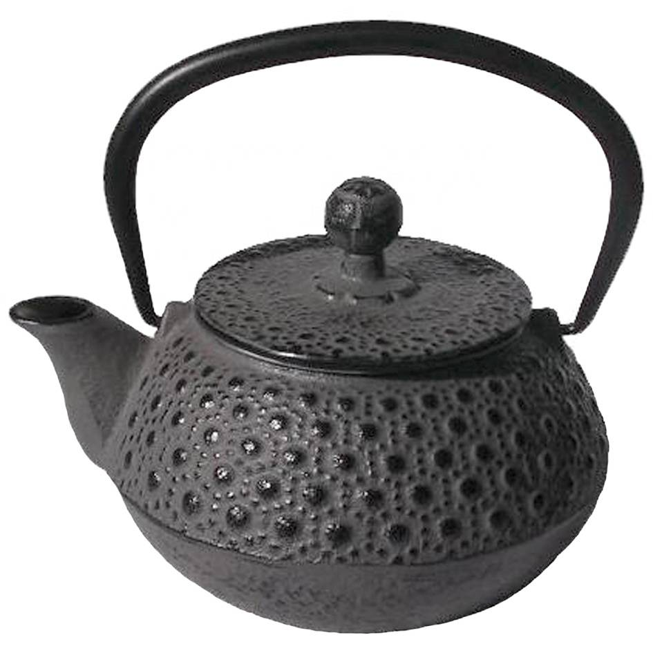 Japanese cast iron teapot kettle