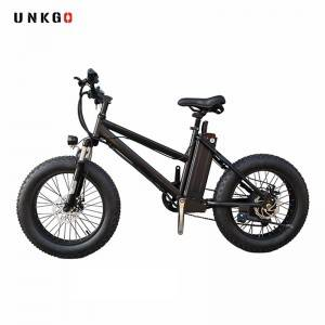 Road Electric Bike Factory Suppliers 36V 250W Max electric fat bike Frame Power Battery Bicycle City Gears Wheel Color Brake