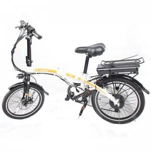 Ebike 2021 stylish design new model electric mo...