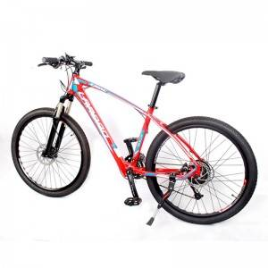 Bike E Ebike Bike Electric Top 1 250w Electric ...
