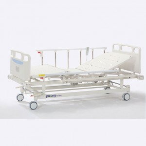 China Cheap price Electrical Hospital Bed - Two function Electric Bed – Pukang